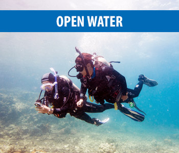 Open Water Diving